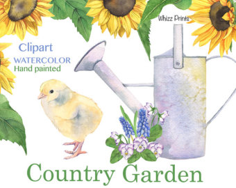 Country clipart bee Sunflowers watercolor Sunny clipart baby