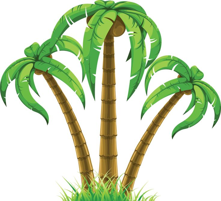 Drawn palm tree leaf The tree Pinterest to 25+