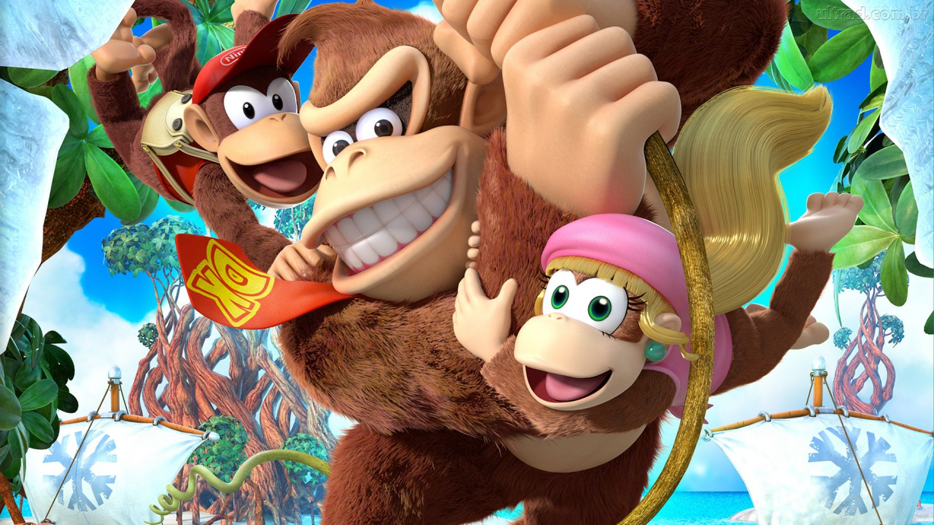 Cover clipart donkey kong tropical freeze #12