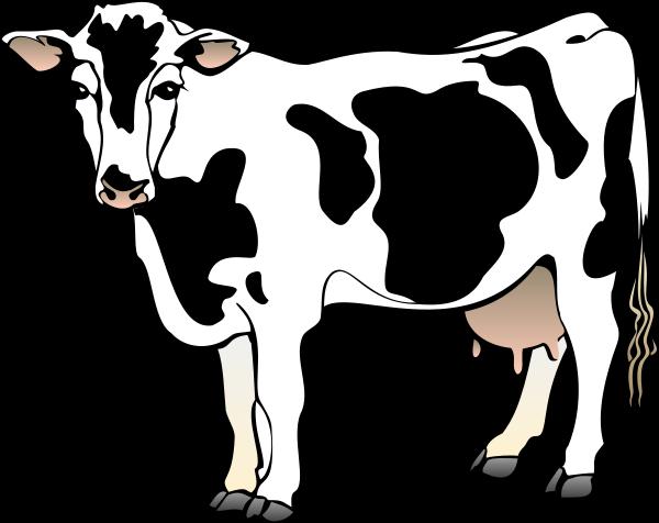 Cow clipart Cow Clip Panda Cartoon Free
