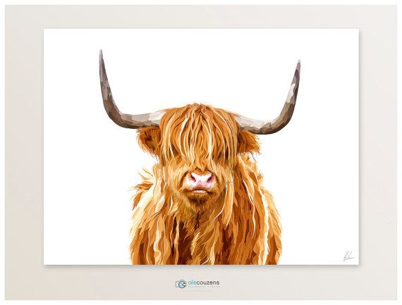 Cow clipart scottish Drawing Cow Painting 25+