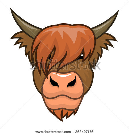 Cow clipart scottish Drawings clipart clipart Highlands Download