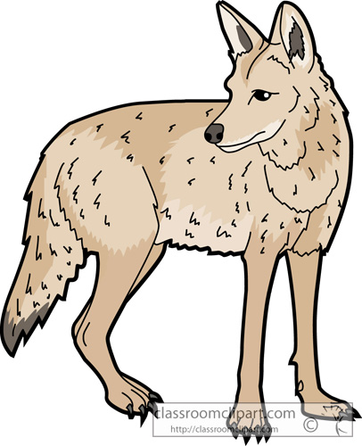 Coyote clipart Art Coyote Size: Pictures and