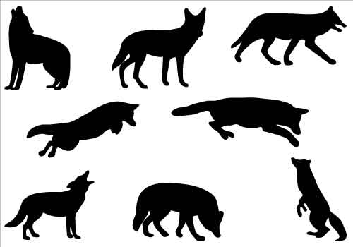 Wolf clipart coyote Art White Black Free Clipart