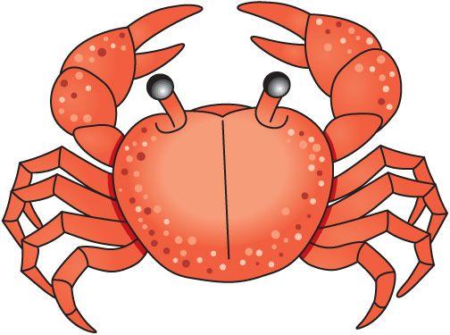 Sea Life clipart baby crab #9