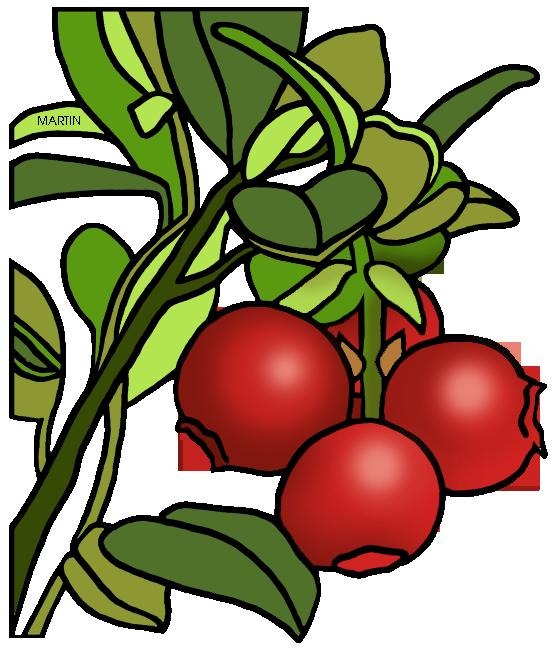 Cranberry clipart Cranberry com 1 clipart clip