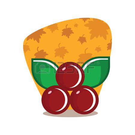 Cranberry clipart Stock Cranberry clipart Illustrations 752