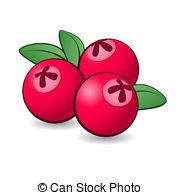 Cranberry clipart 349 green Cranberry 2 illustrations