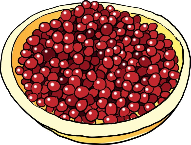 Cranberry Relish clipart Photo com clipart 3 clipart