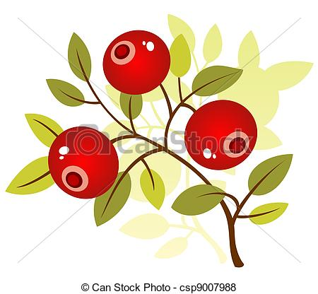 Cranberry clipart Cranberry LadyLite12/812; Stock white Illustration
