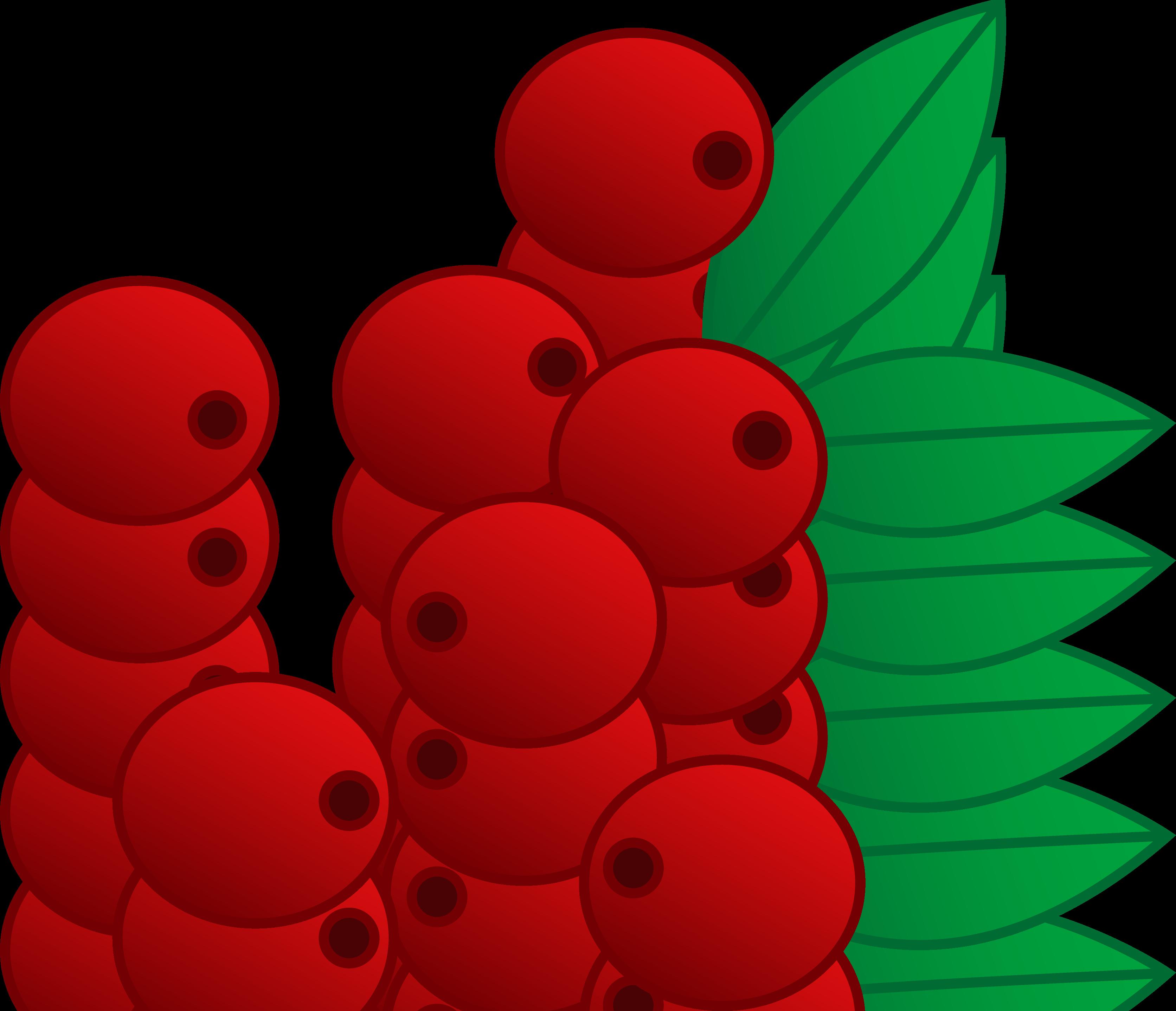Currants clipart Red Cranberries Free Cranberry Vector