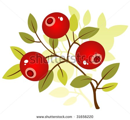 Single clipart cranberry Drink Cranberry cliparts Clipart Stylized