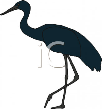 Animal clipart crane Leg Bird Standing Art Bird