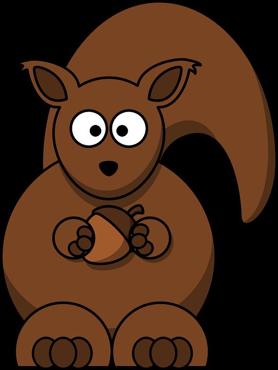 Acorn clipart brown squirrel Park Cartoon Squirrel Max Garden