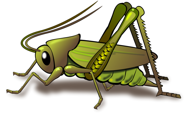 Cricket clipart Cricket Free Cricket Clipart on