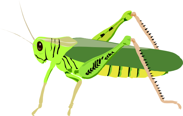 Bug clipart cricket Insect Cute Clipartix Cute clipart