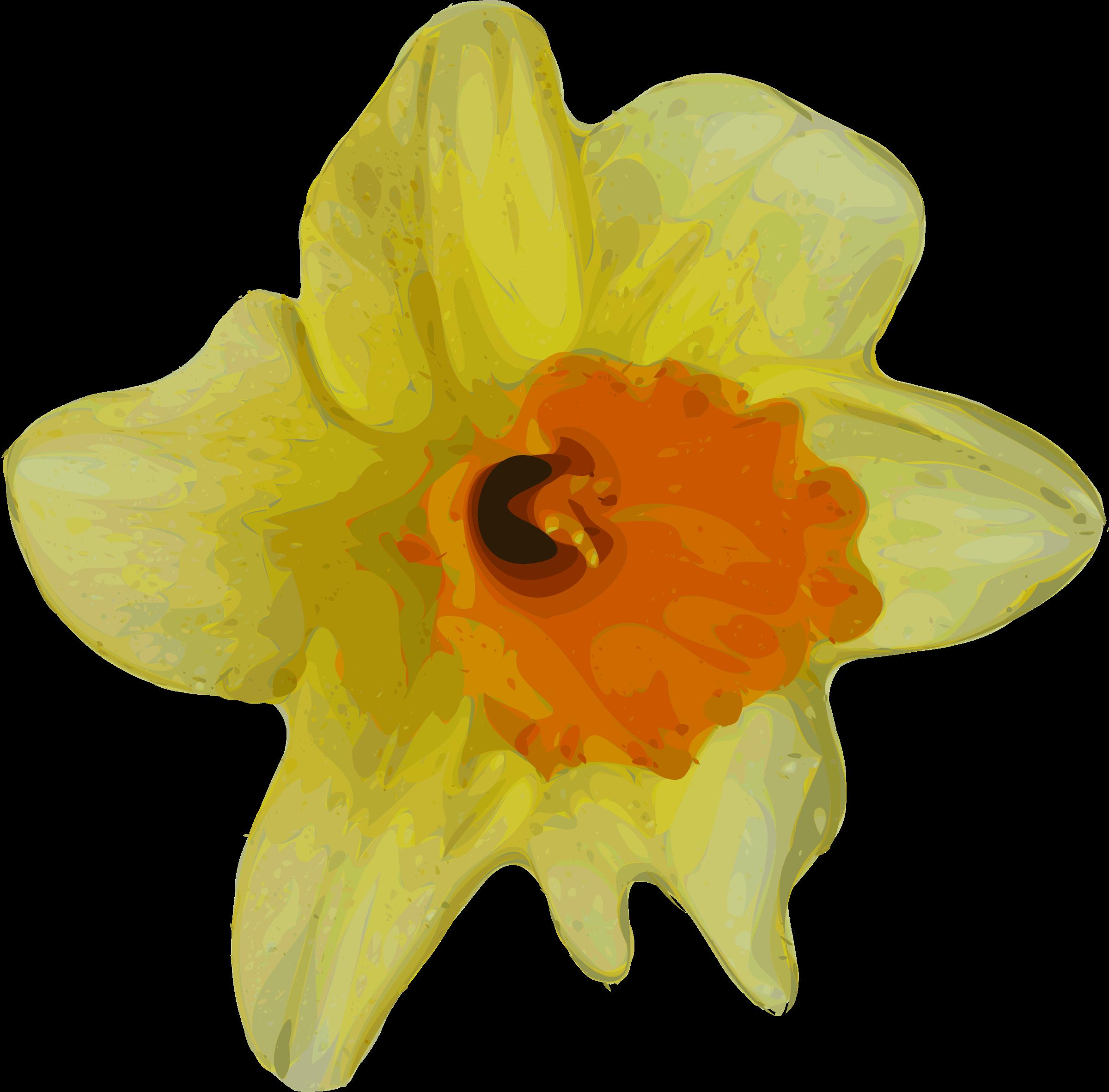 Crocus clipart spring flower Crocus IMAGE (PNG) BIG Clipart