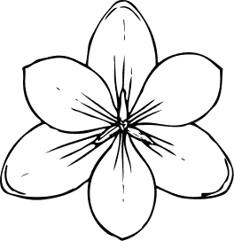 Blossom clipart black and white And Terms: white Flower Free
