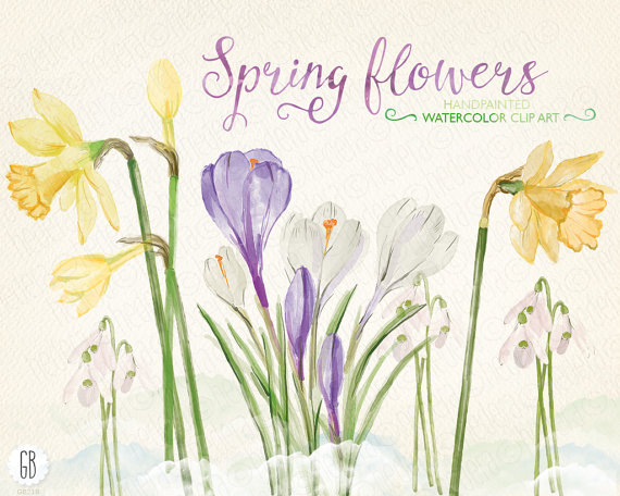 Snowdrop clipart dead flower  early spring early Watercolor