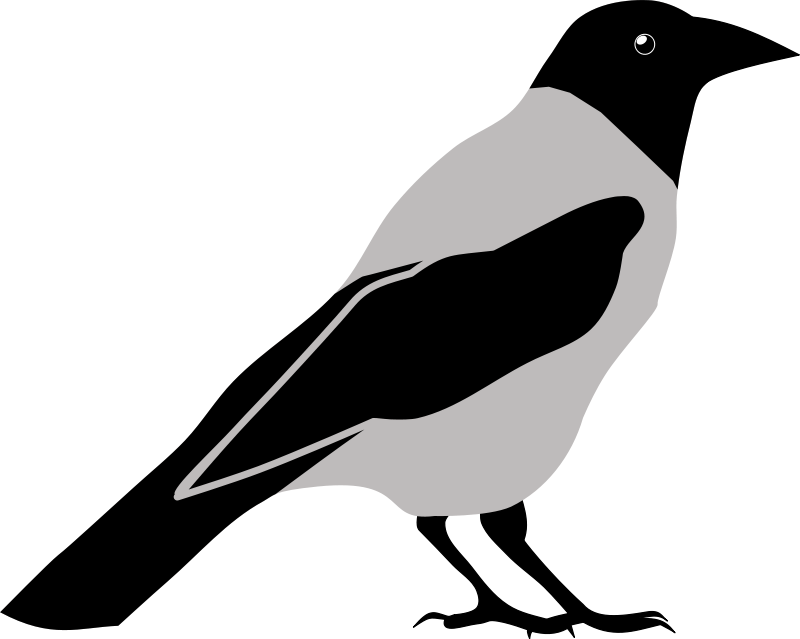 Crow clipart Crow_clipart_1 Crow png