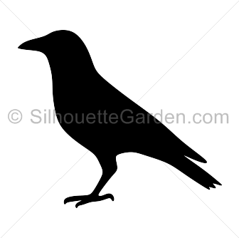 Crow clipart silhouette Image  the Download free