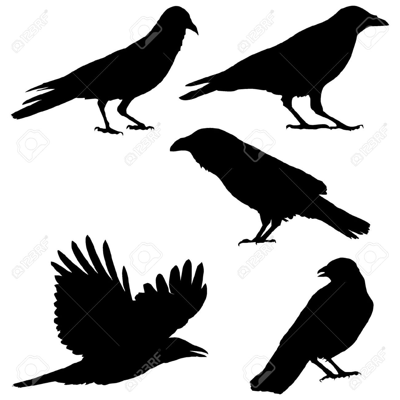 Crow clipart simple Crow art 130 #6 clip
