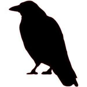 Crow clipart transparent background Clip art Crow Polyvore backgrounds