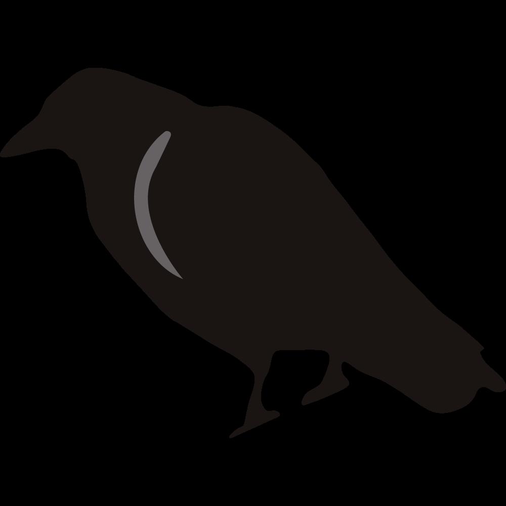 Crow clipart transparent background Clipart birds Crow crowclipart photo