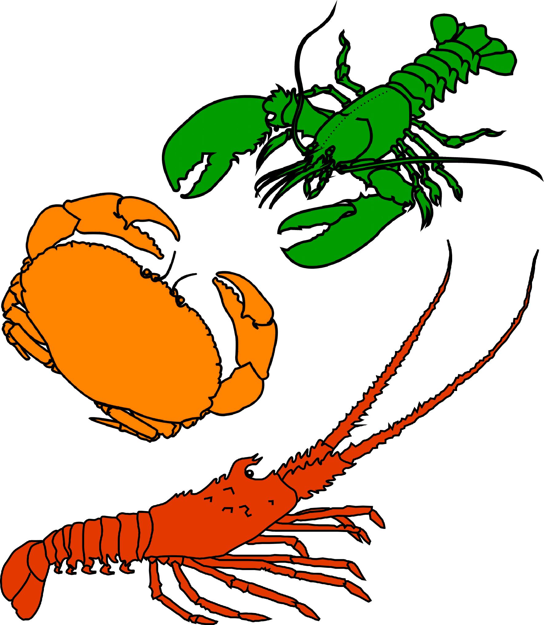 Crustacean clipart Clipart  Crustacean
