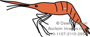 Crustacean clipart sea star & Acclaim crustacean stock Images