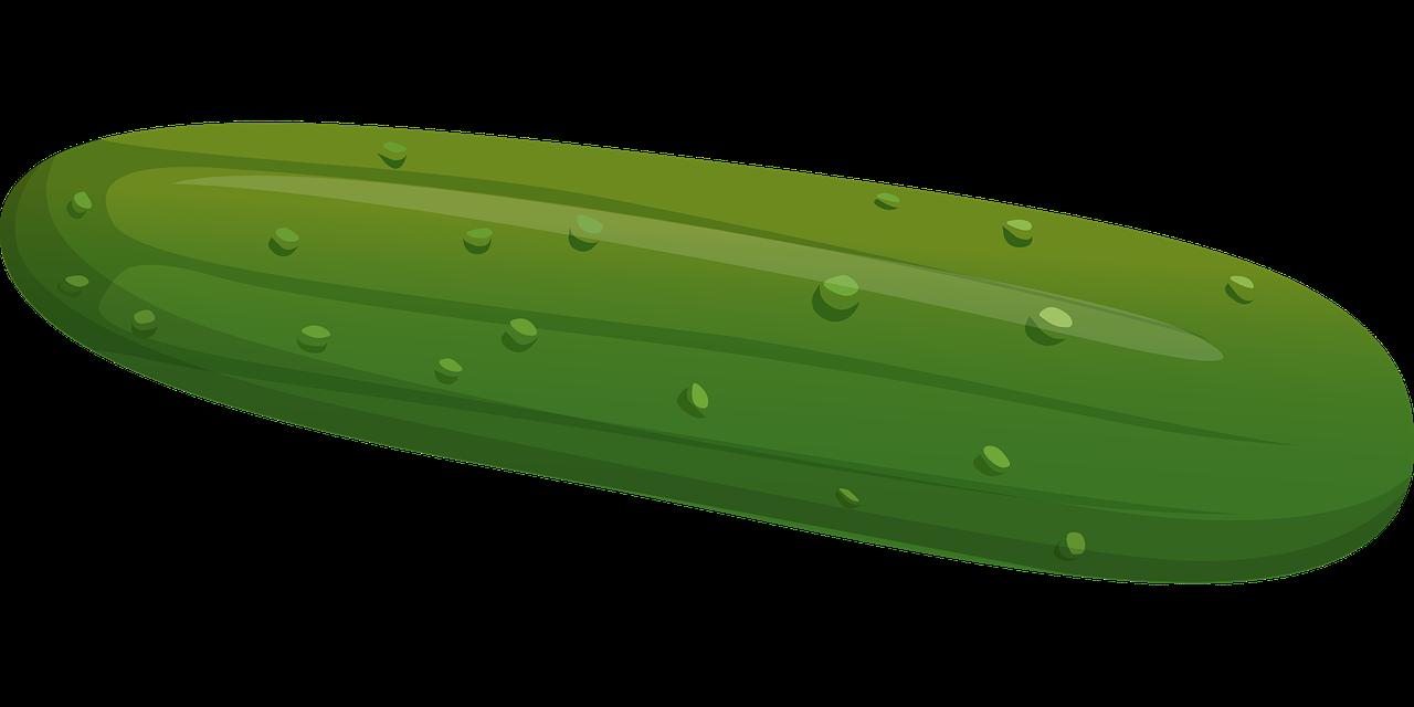 Cucumber clipart Cucumber art use Cucumber #41476