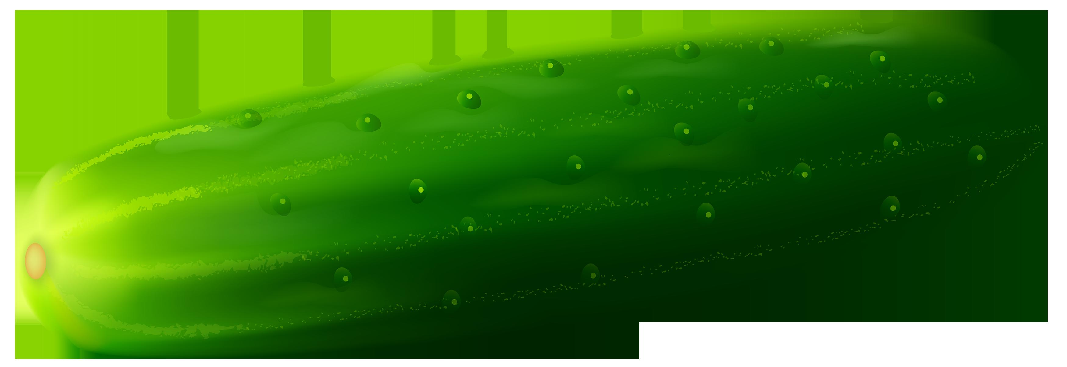 Cucumber clipart Clip 3 Cucumber clip Art
