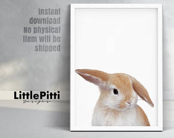 Cuddle clipart baby bunny Photo Bunny cute print rabbit