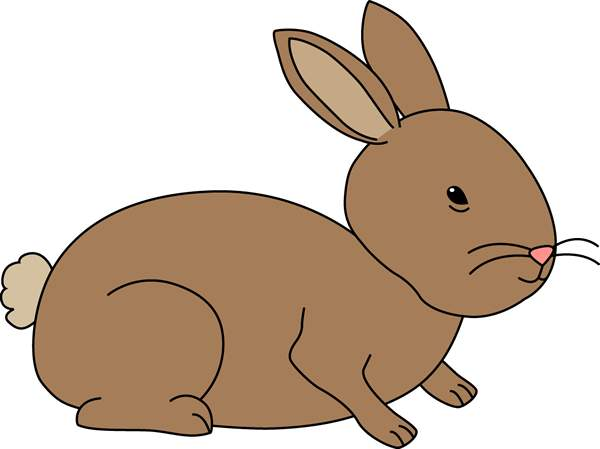 Cuddle clipart brown bunny #1