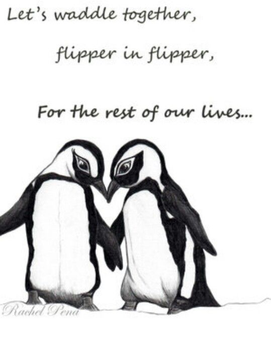 Cuddle clipart penguin love Penguin? ideas Love!! Where's best