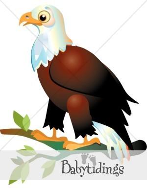 Bald Eagle clipart baby Panda Clipart clipart eagles Images