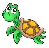Turtoise clipart sea turtle #7