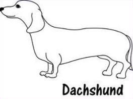 Dachshund clipart Dogs Tags: Clipart Free Dachshund