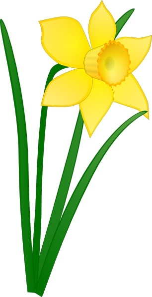 Daffodil clipart Art svg vector svg in