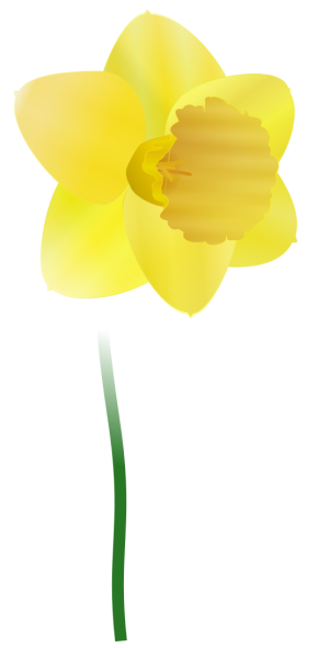 Daffodil clipart Clipart and Domain Flower Clipart