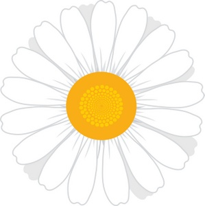 Single clipart yellow flower Daisy Images Flowers Flowers Art