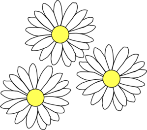 Drawn daisy transparent #13