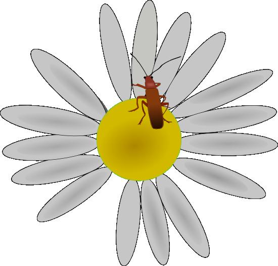 Bugs clipart little flower Clipart Vector Flower On Bug