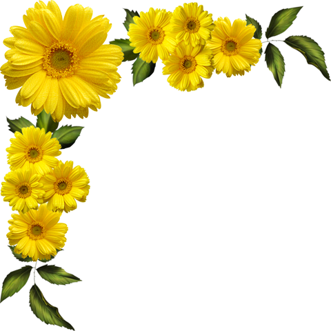 Yellow Flower clipart floral corner Daisies Clipart Daisies cliparts Transparent