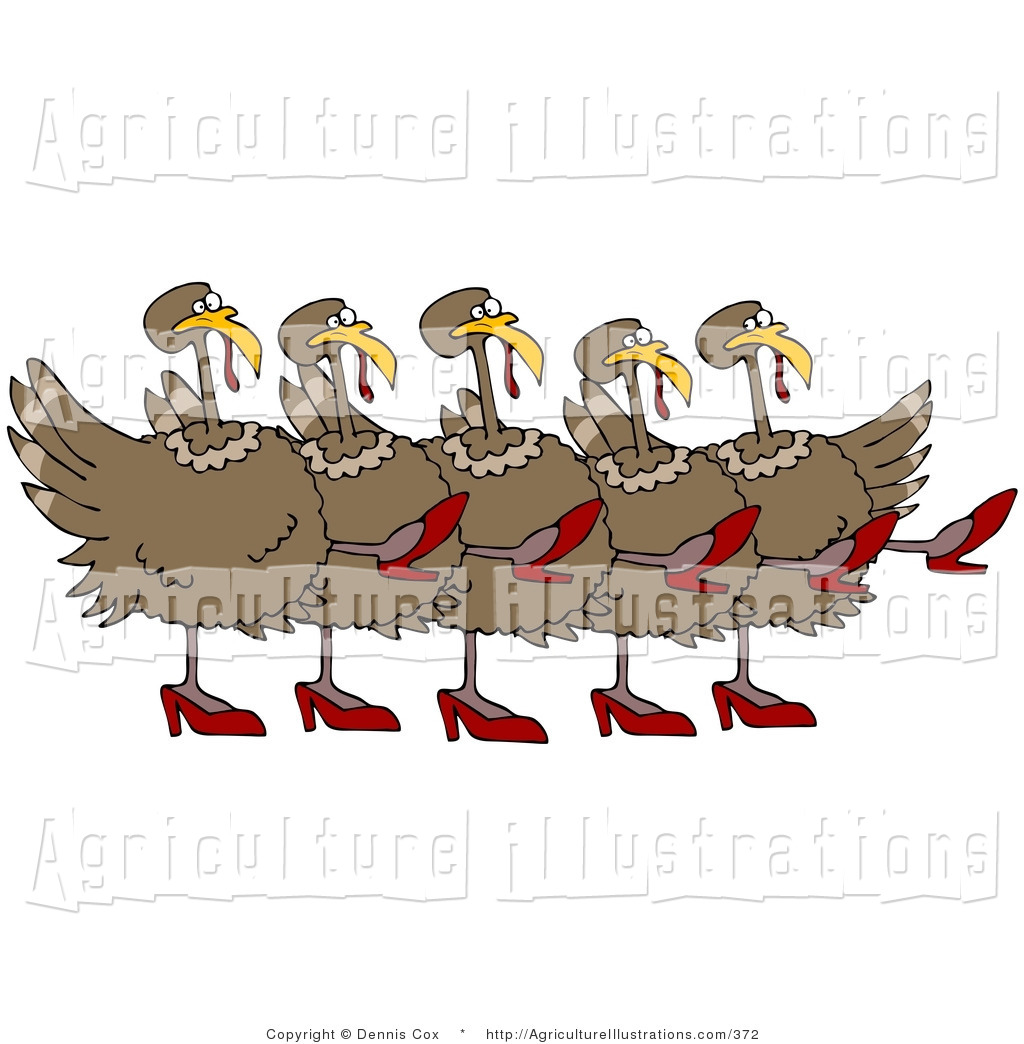 Danse clipart turkey Their up Turkey of Five