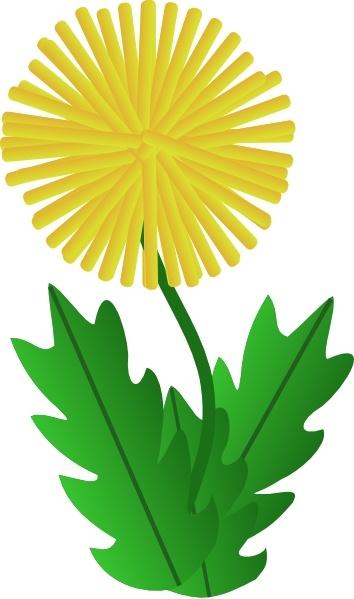 Dandelion clipart In Dandelion clip clip drawing
