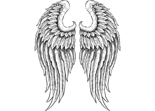 Wings clipart sketched For angel shutterstock of wings