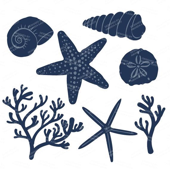 Dark Blue clipart coral Navy Blush Seashells Seashells Seashells