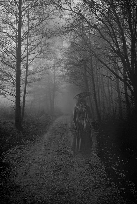 Dark Wood clipart creepy forest Woods best on Spooky 443