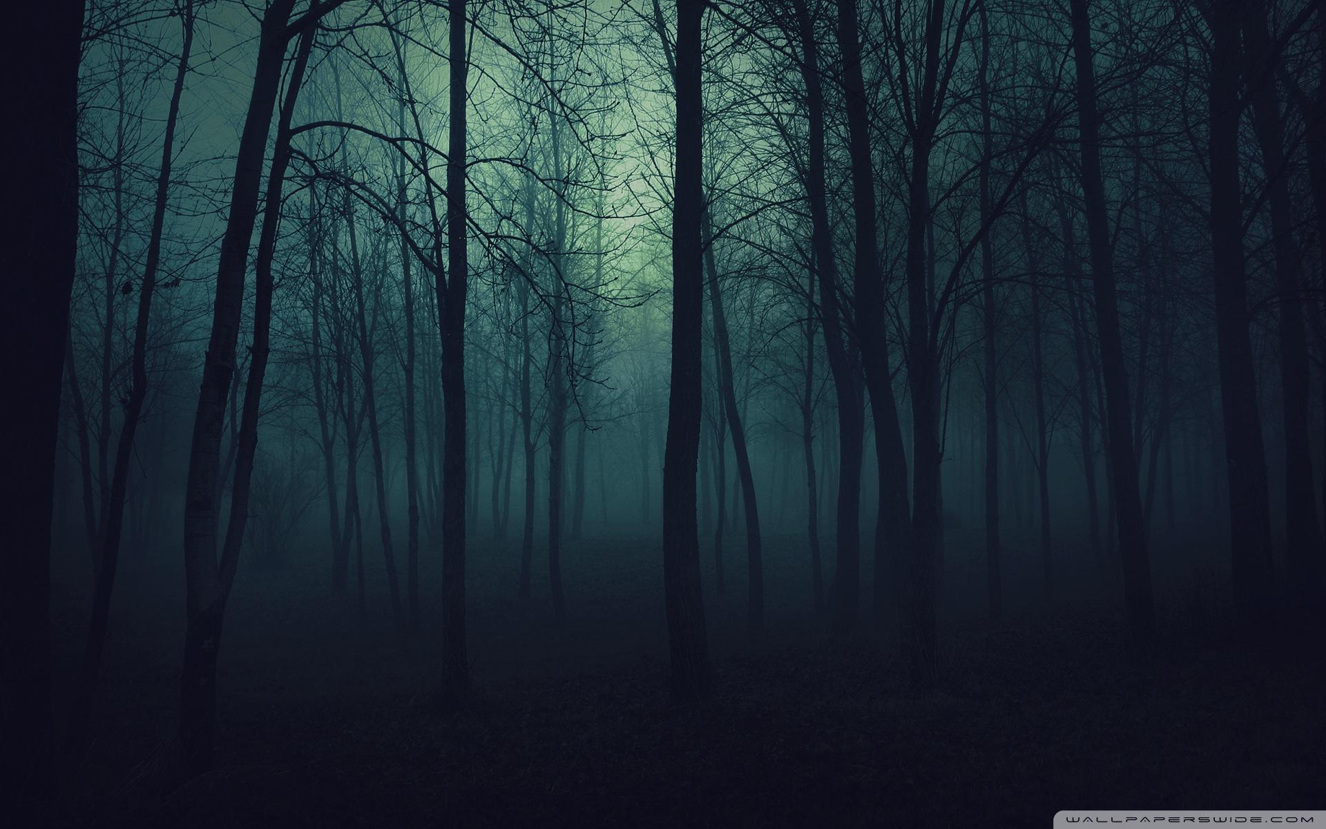 National Park clipart dark forest #3